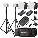 Neewer Double CN-304 Ultra High Power Panel Dimmable LED Video Light Kit with Large Deluxe Bag to Carry All Lights& Accessories for Canon, Nikon, Sony and Other Digital SLR Cameras
