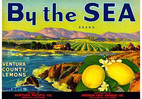 Lemon Fruit Crate Label - A SLICE IN TIME Montalvo Ventura County California By The Sea Brand Lemons Lemon Fruit Citrus Crate Box Label Art Print