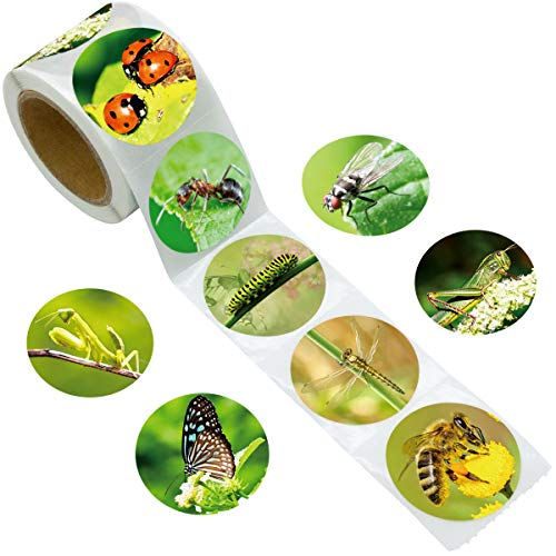 Fancy Land Realistic Insect Bug Stickers for Kids Learning Perforated 200Pcs Per Roll