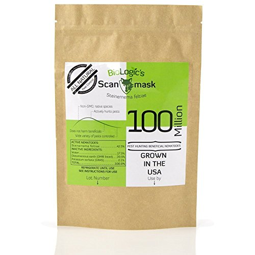 BioLogic Scanmask Beneficial Nematodes, 500 (5x100M) Million Steinernema feltiae (Sf) Nematodes for Natural Insect Pest Control
