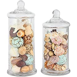 Apothecary Jar 2 Piece Set, Wedding Candy Buffet