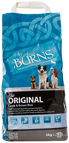 Burns Lamb And Brown Rice Adult Dog Food 2Kg