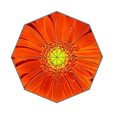 African daisy Orange Daisy Gerbera Flower Foldable Rain Umbrella