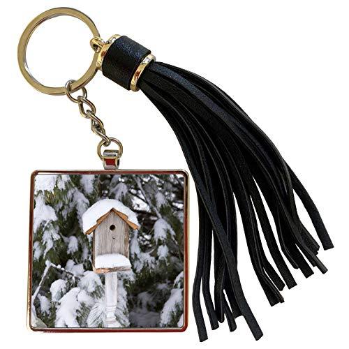 3dRose Danita Delimont - Birdhouses - Birdhouse near pine tree in winter, Marion, Illinois, USA. - Tassel Key Chain (tkc_206536_1)