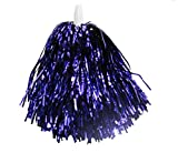 purple Cheerleader Party Favors Flower Ball Pom Poms