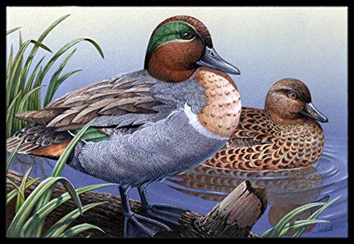 18H X 27W Carolines Treasures PTW2057MAT Green Teal Ducks in The Water Indoor or Outdoor Mat 18x27 Multicolor