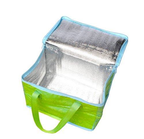 Kühltasche Thermotasche Iso Tasche Kühlbox SOLE französisches Design