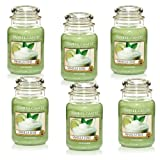 Yankee Candle Company Vanilla Lime 22-Ounce Jar Candle, Large, Set of 6