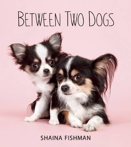 Image result for between two dogs