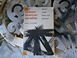 img - for Four Postwar American Novelists Bellow, Mailer, Barth and Pynchon book / textbook / text book