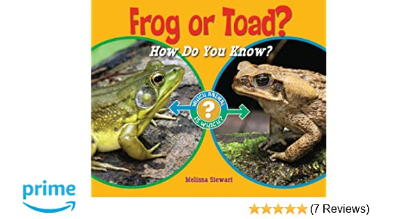 Frog Or Toad How Do You Know Which Animal Is Which Melissa