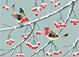 img - for Winter Songbirds Deluxe Boxed Holiday Cards (Christmas Cards, Holiday Cards, Greeting Cards) book / textbook / text book