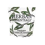 Facial Pain On Airplane - Herban Essentials Mini Eucalyptus Towelettes