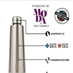 Manna Moda Resolutions Stainless Steel Double Walled Vacuum Insulated 18 oz Water Bottle | No Sweat | BPA Free | Keeps Drinks Hot 12 Hours & Cold 24 Hours - This Is My Year (Silver)