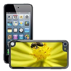 Etui Housse Coque de Protection Cover Rigide pour // M00109169 Abeja Tiny Bee Nectar Flor Naturaleza // Apple ipod Touch 5 5G 5th
