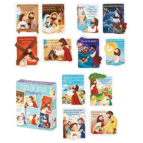 Life Of Jesus Multi 2 x 3 Vinyl Refrigerator Magnet Set of 12 ()