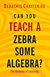 img - for Can you teach a Zebra some Algebra?: The Alchemy of Learning book / textbook / text book