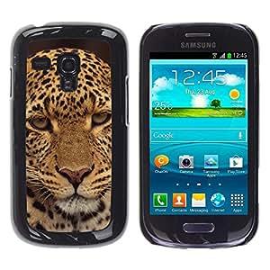 Caucho caso de Shell duro de la cubierta de accesorios de protección BY RAYDREAMMM - Samsung Galaxy S3 MINI NOT REGULAR! I8190 I8190N - Leopard Disappointed Furry Animal Wild