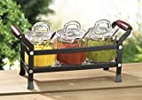 Classic Condiment 10 piece set in a Caddy Organizer with Handles and Spoons