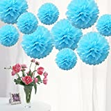 TtS 10 Pack MIX Tissue Paper Pompoms Pom Poms Flower Wedding Party Decoration 21 Colours Available to Choose