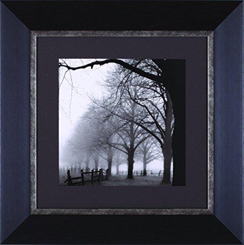 Art Effects Morning Framed Artwork, Black/White by Art Effects, Inc