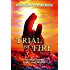 TRIAL BY FIRE:  Christian Fiction End-Times Prophecy Thriller (The Omega Series Book 2)