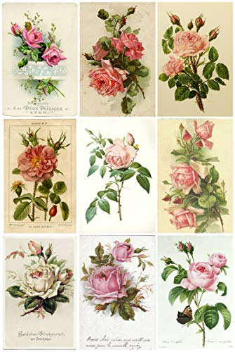 (Vintage French Roses #2 Collage Sheet 8.5 x)