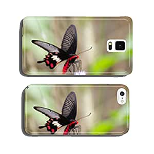 Monarch butterfly on white flowers cell phone cover case iPhone6