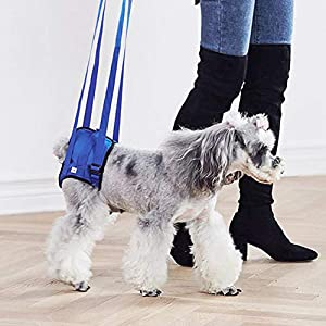 Minnya Dog Sling Assist Belt BreathableDog Walking Lifting Carry Lift Support Harness Dog Mobility Recovery Sling for… Click on image for further info.
