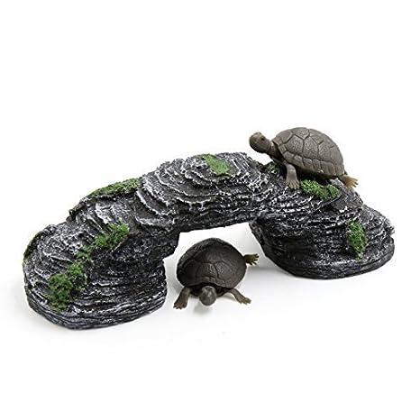 Tery Puente para tanque de pescado tortuga escalada piedra reptil hábitat acuario paisaje: Amazon.es: Hogar