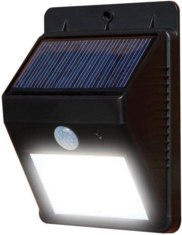 sin necesidad de herra LED solar al aire libre resistente a la intemperie luz blanca c/álida Desarrollado secuencia de la bater/ía Operado 12 flor de la orqu/ídea luces de cadena Garden Party Warm LED
