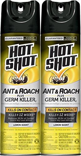 Hot Shot Ant Roach