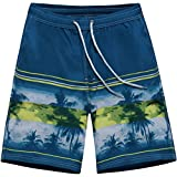 ALiberSoul Men's Quick-Drying Boardshorts Tropical Design Swimming Trunks (US M, Style 2)