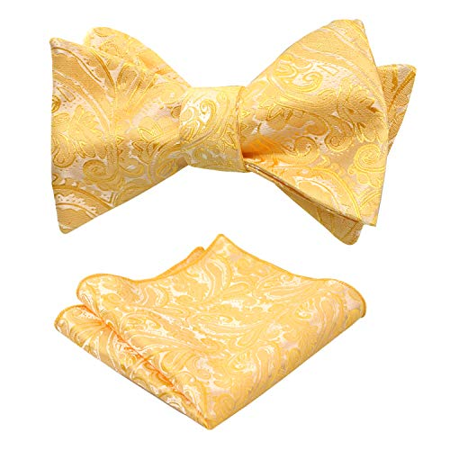 Alizeal Mens Paisley Jacquard Self Bow Tie Pocket Square Set (Yellow)