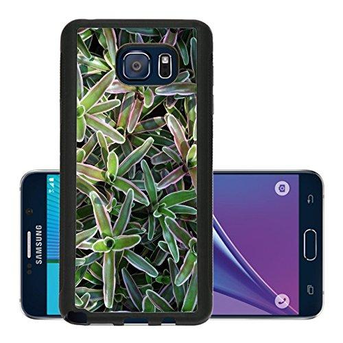 luxlady-premium-samsung-galaxy-note-5-aluminum-backplate-bumper-snap-case-image-21282219-bromiliad-b