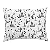 Roostery Southwest Cactus Tri Triangle Tipi Teepee Baby Standard Knife Edge Pillow Sham Black and White Tipi Night by Charlottewinter 100% Cotton Sateen