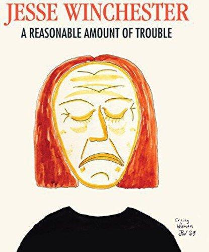 reasonable-amount-of-trouble