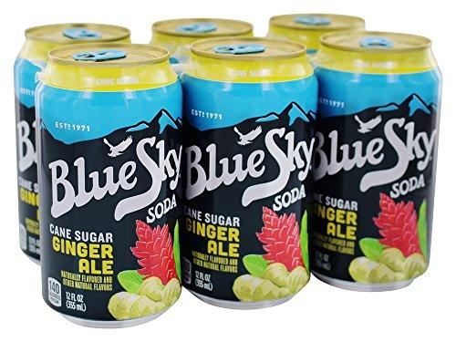 Blue Sky - Cane Sugar Soda Ginger Ale - 6 Pack ()