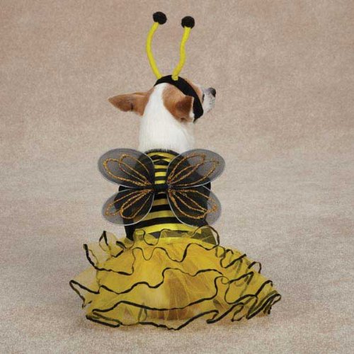 Casual Canine Bee Mine Costume Xsm Yellow