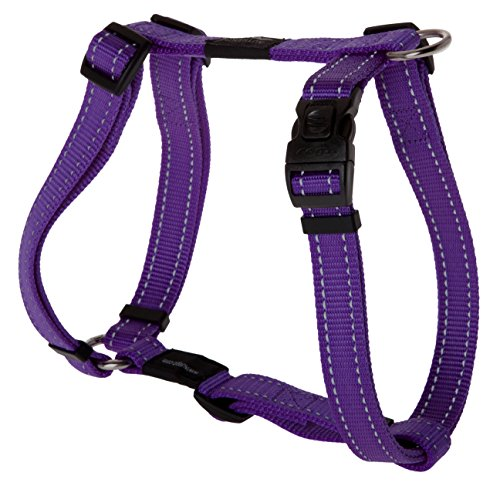 Reflective Adjustable Dog H Harness for Large Dogs; matching collar and leash available, Purple