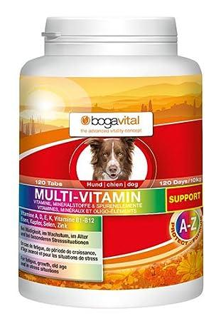 bogavital Multi-Vitamina Soporte para Perros: Amazon.es: Productos para mascotas