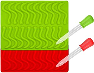 CHYIR Candy Silicone Molds & Ice Cube Trays,2 Pack Gummy Worm Molds 20 Cavities with Bonus Dropper (Red, Green)