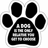 Car Magnet-Paw- A dog is the only relative you get to choose- 5