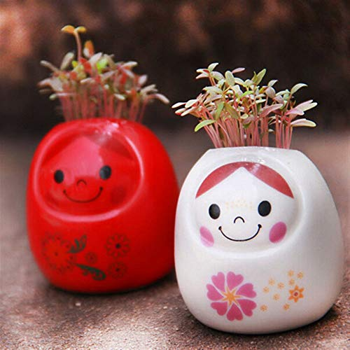 Lihin Gorgeous Luxurious Bathroom Supplies DIY Mini Ceramic Doll Green Grass Potted Plant Desktop Office Decor (Color : Red)