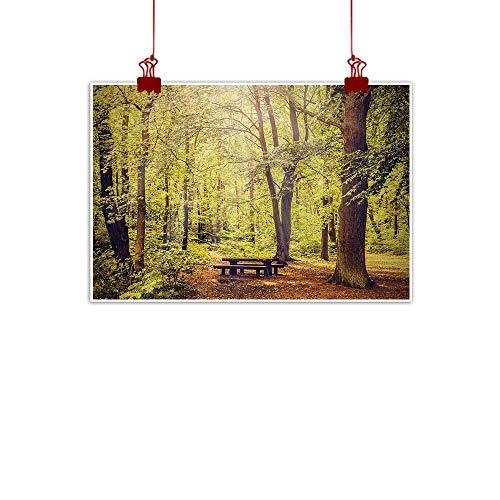 - Sunset glow Wall Painting Prints Forest,Picnic Table in The Forest Foliage Greenery Nature Theme Summer and Winter Theme,Green Brown 20