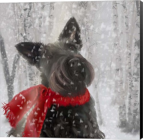 - Scotty Dog Red Scarf by Clare Davis London Canvas Art Wall Picture, Museum Wrapped with Black Sides, 14 x 14 inches