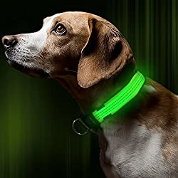 BSeen LED Dog Collar, USB Rechargeable Light Up Safety Pet Collar with 3 Glowing Modes & 3 Reflective Strings, Adjustable Soft Nylon Webbing, Great for Small Medium Large Dogs (Medium, Neon Green)