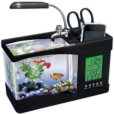Escritorio Cubical USB Mini acuario Fish Tank lámpara de luz LED reloj LCD filtro: Amazon.es: Productos para mascotas