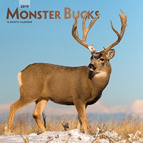Monster Bucks 2019 12 x 12 Inch Monthly Square Wall Calendar with Foil Stamped Cover, Wildlife Animals Hunting (Multilingual Edition)