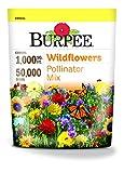 Burpee Wildflower Seed Mix for Pollinators
